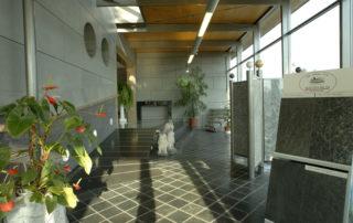 Ausstellung Eingangsbereich
